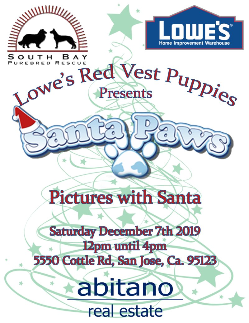 Sants Paws at Lowe's Home Improvement Wharehouse Flier